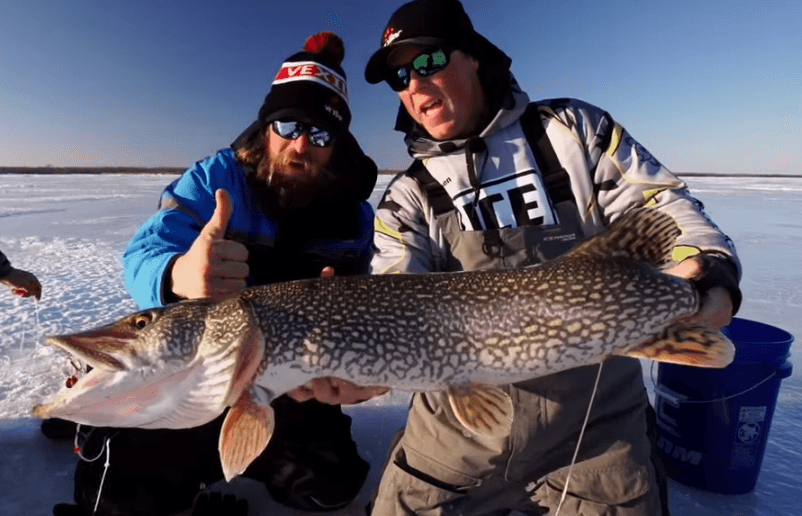 Buffalo Bay northern pike