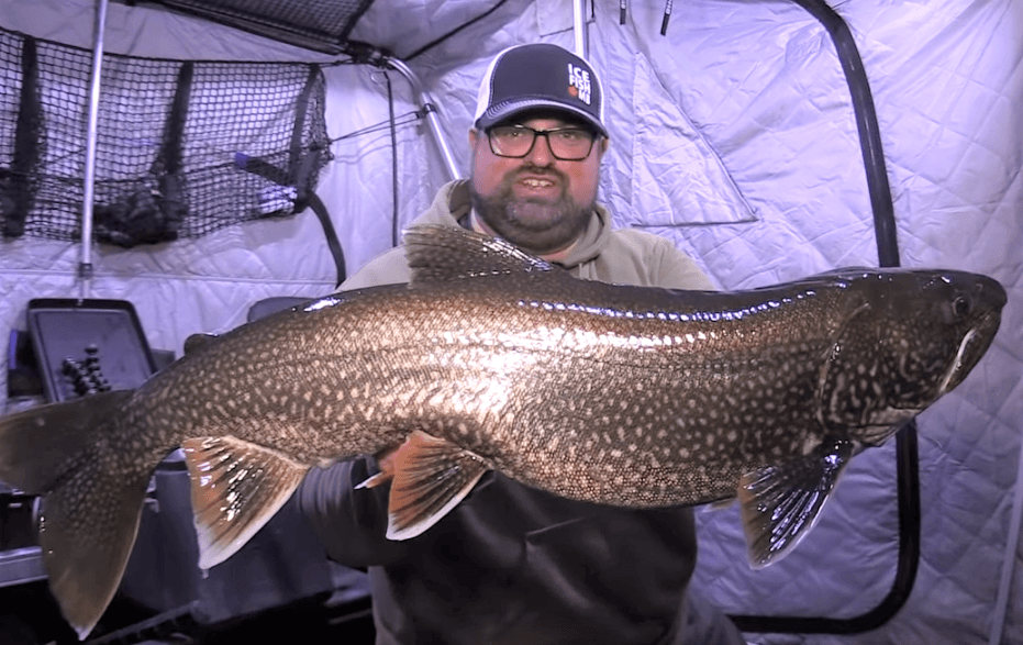 Master Angler lake trout