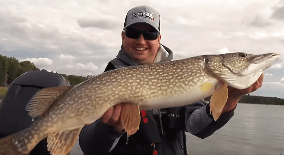 Cedar Lake northern pike
