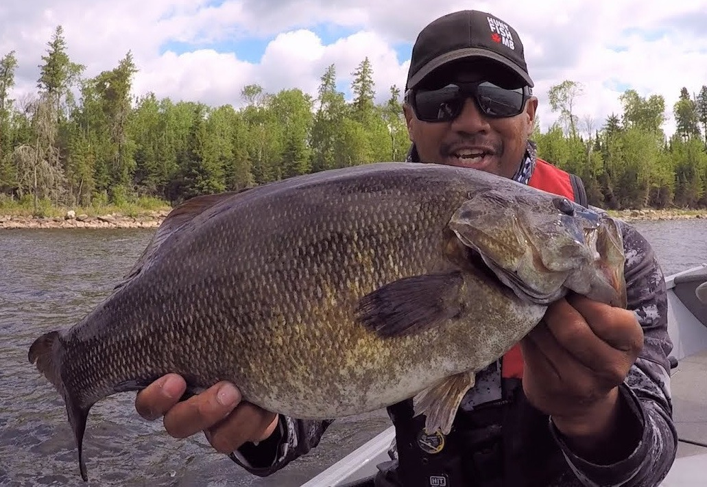 Trophy Smallmouth Bass in Manitoba