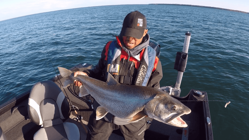 Fishing For Giant Fall Lakers Manitoba Hot Bite Travel