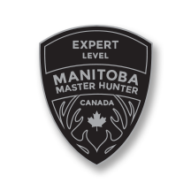 Expert Level Badge