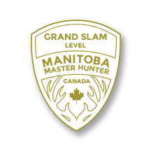 Grand Slam Badge