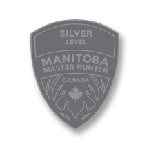 Silver Level Badge