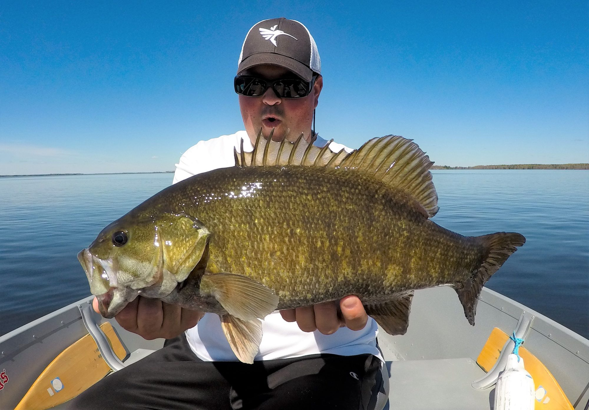 Top 6 Early Season Lures and Baits Sure to Catch Fish in