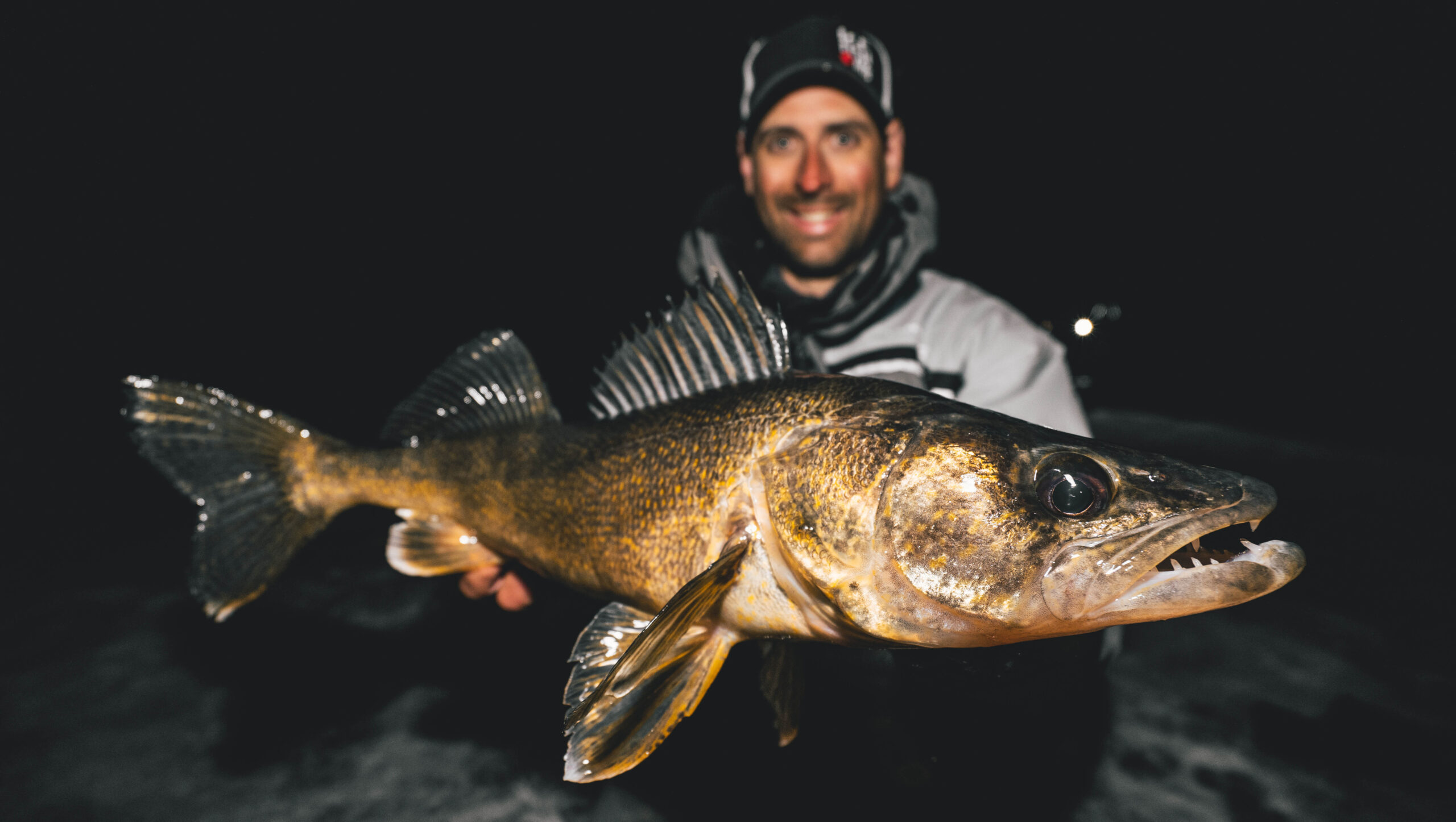 Manitoba walleye